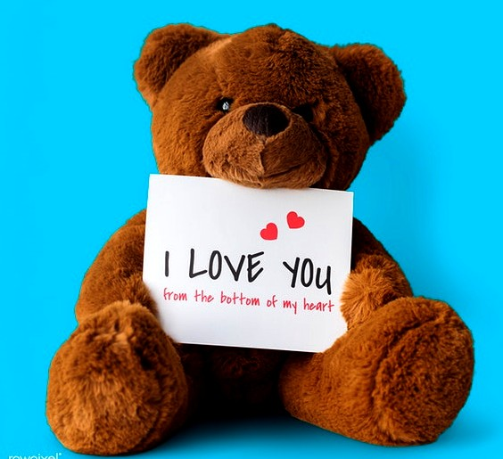Happy Teddy Day for lover