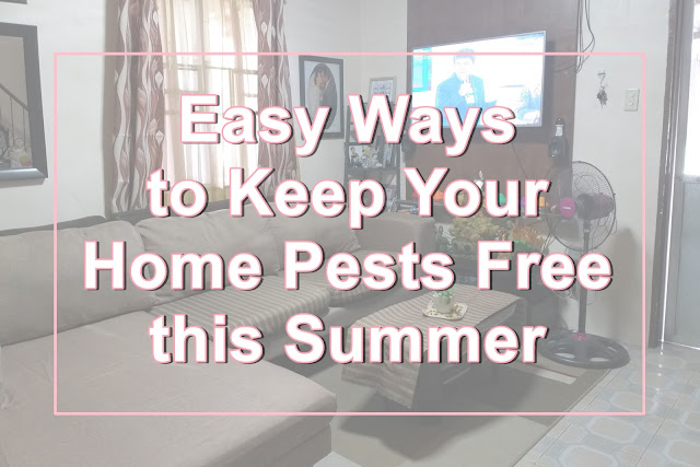 pests, pests free home, home, home and living, best ways to keep your home summer pests free