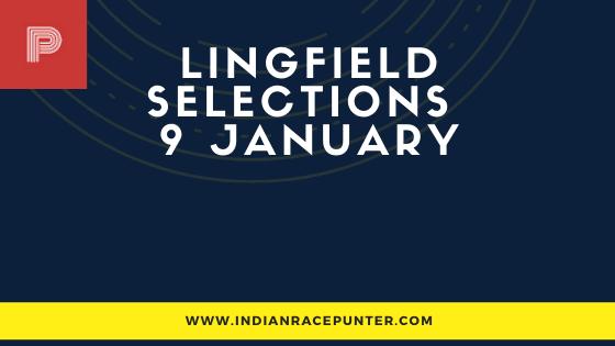 Lingfield Race Selections 9 January