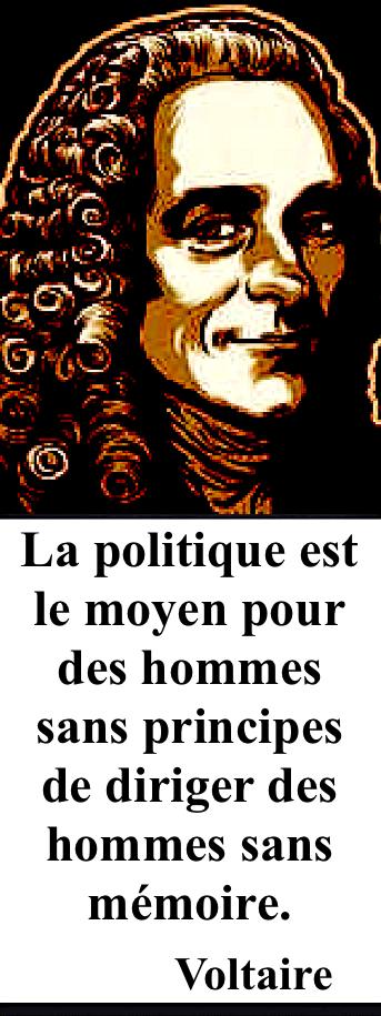 https://fr.wikipedia.org/wiki/Voltaire