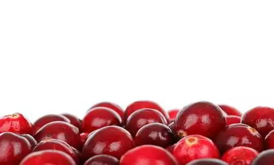 Top 15 Antioxidant Foods You Should Always Know.