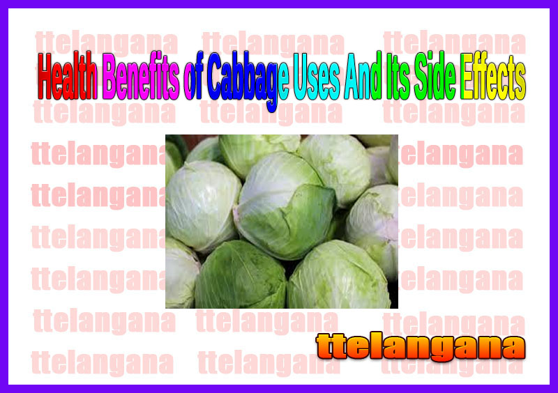 Health Benefits of Cabbage Uses And Its Side Effects