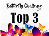 Top 3 at Butterfly Challenge