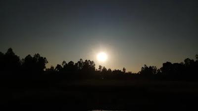 Afternoon sun image