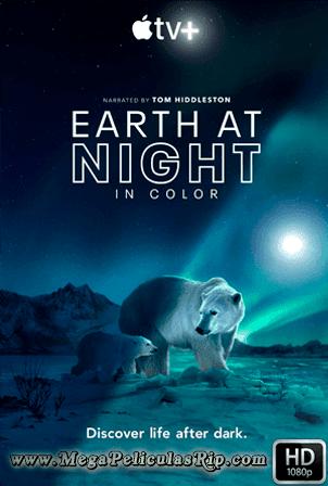 Planeta Nocturno A Todo Color Temporada 1 [1080p] [Latino-Ingles] [MEGA]