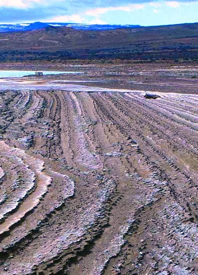 Lacustrine soil deposits in Cardiel Lake, Patagonia, Argentina