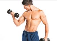 protein untuk bina badan; protein untuk bina otot