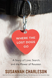 Where the Lost Dogs Go book cover. Summer Reading 2019