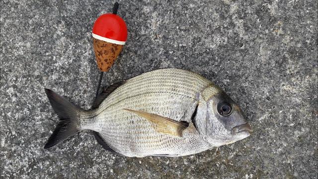 pesca con corcho
