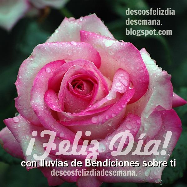 Frases con imágenes de buenos días, saludos bonitos para desear un buen día a amigos y familia por Mery Bracho.