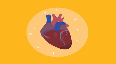 jenis-jenis penyakit jantung