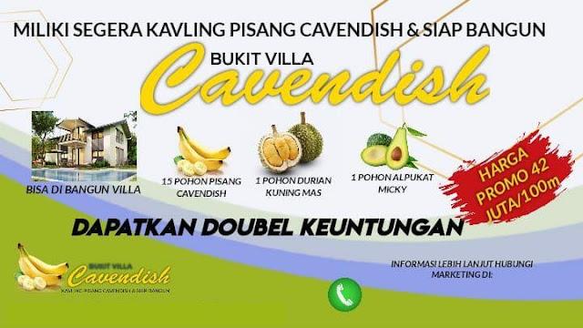 Bukit Villa Cavendish