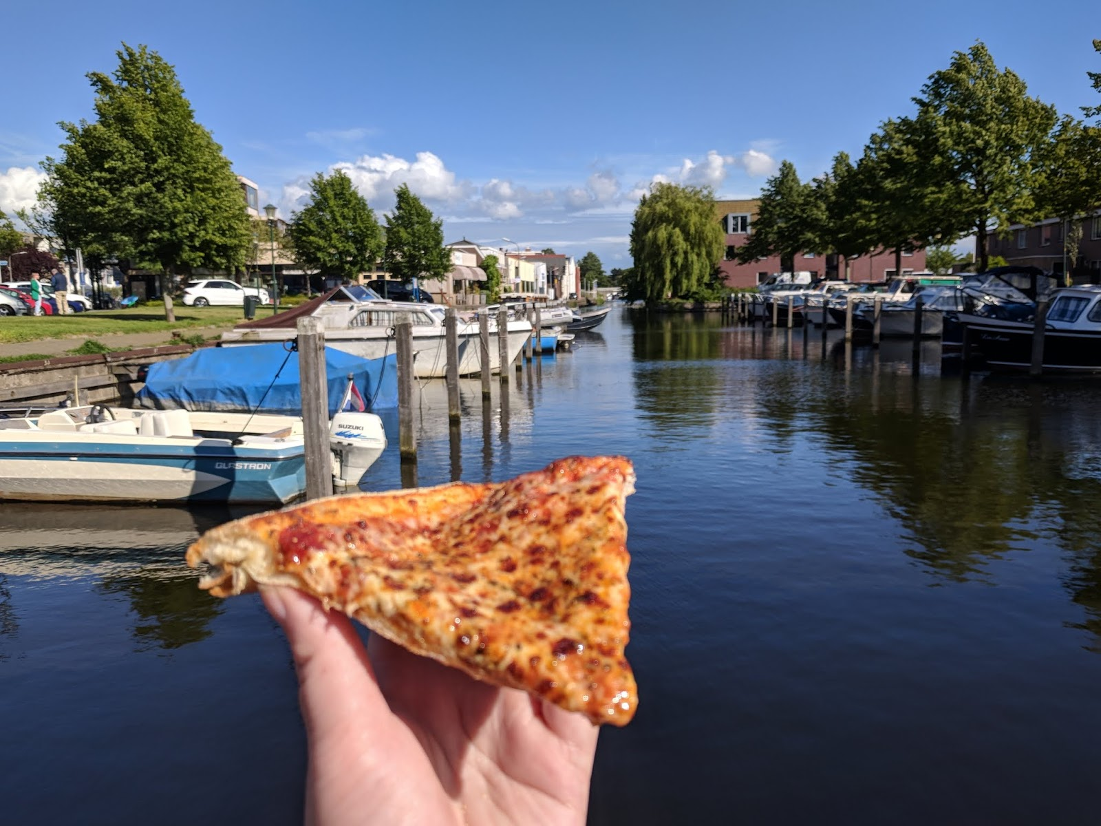 Pizza from Dominoes by the Canal in Wassenaar