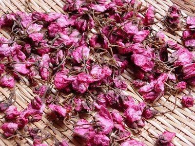 Salt Preserved Cherry Blossoms