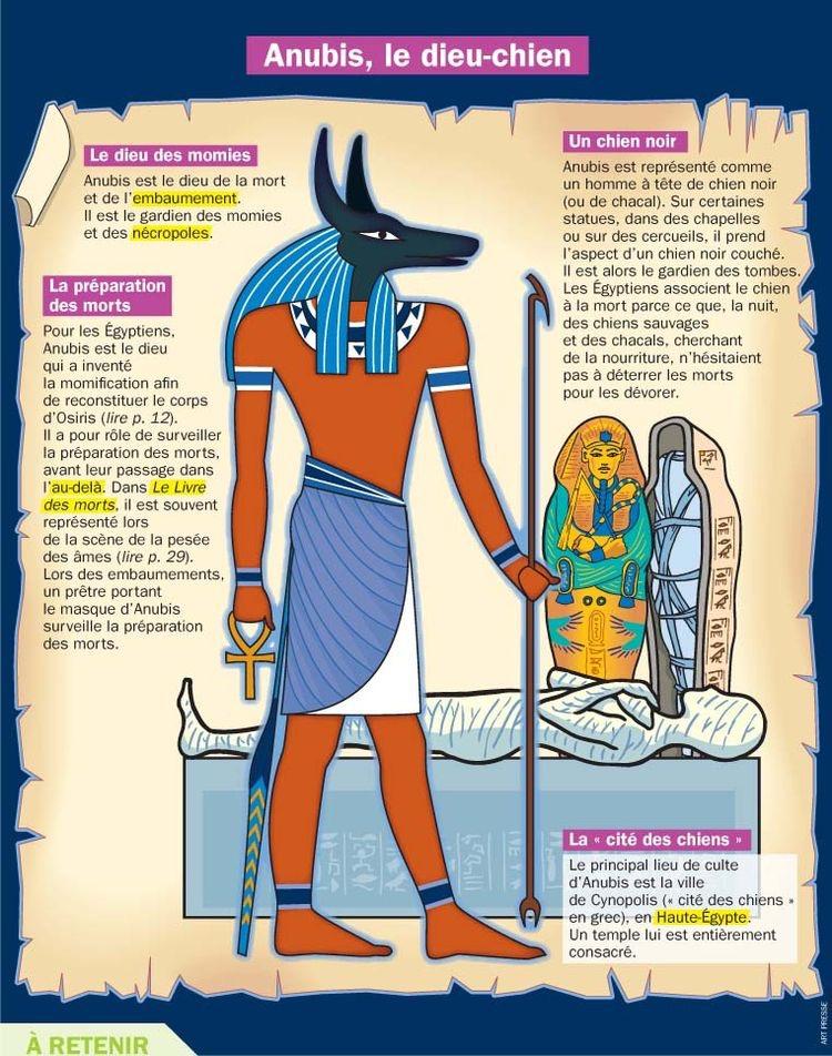 Anubis, Le Dieu-Chien