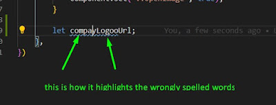 Spelling Mistake Highlights In Code
