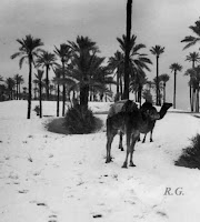 Béchar (Argelia) 1948
