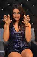 Sanjjana at her best expressions as aggresive cat   beautiful Actress Sanjjana Exclusive Pics 051.JPG