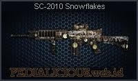 SC-2010 Snowflakes