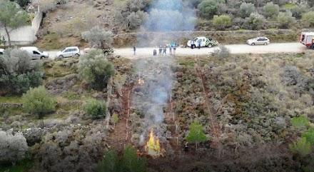 WWF: Νέο πιλοτικό πρόγραμμα για δασικές πυρκαγιές