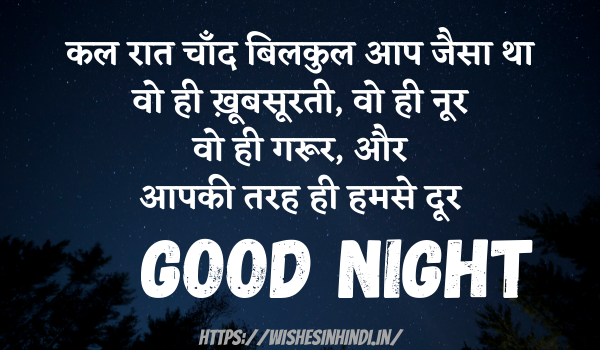 Best Good Night Wishes In Hindi