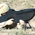Senjata Perang Canggih, Negara Maju Punya Senjata Canggih, Senjata Otomatis