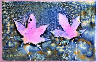 Wet cyanotype_Sue Reno_Image 279