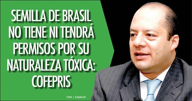 Multará la COFEPRIS por venta, publicidad y distribución de la Semilla de Brasil
