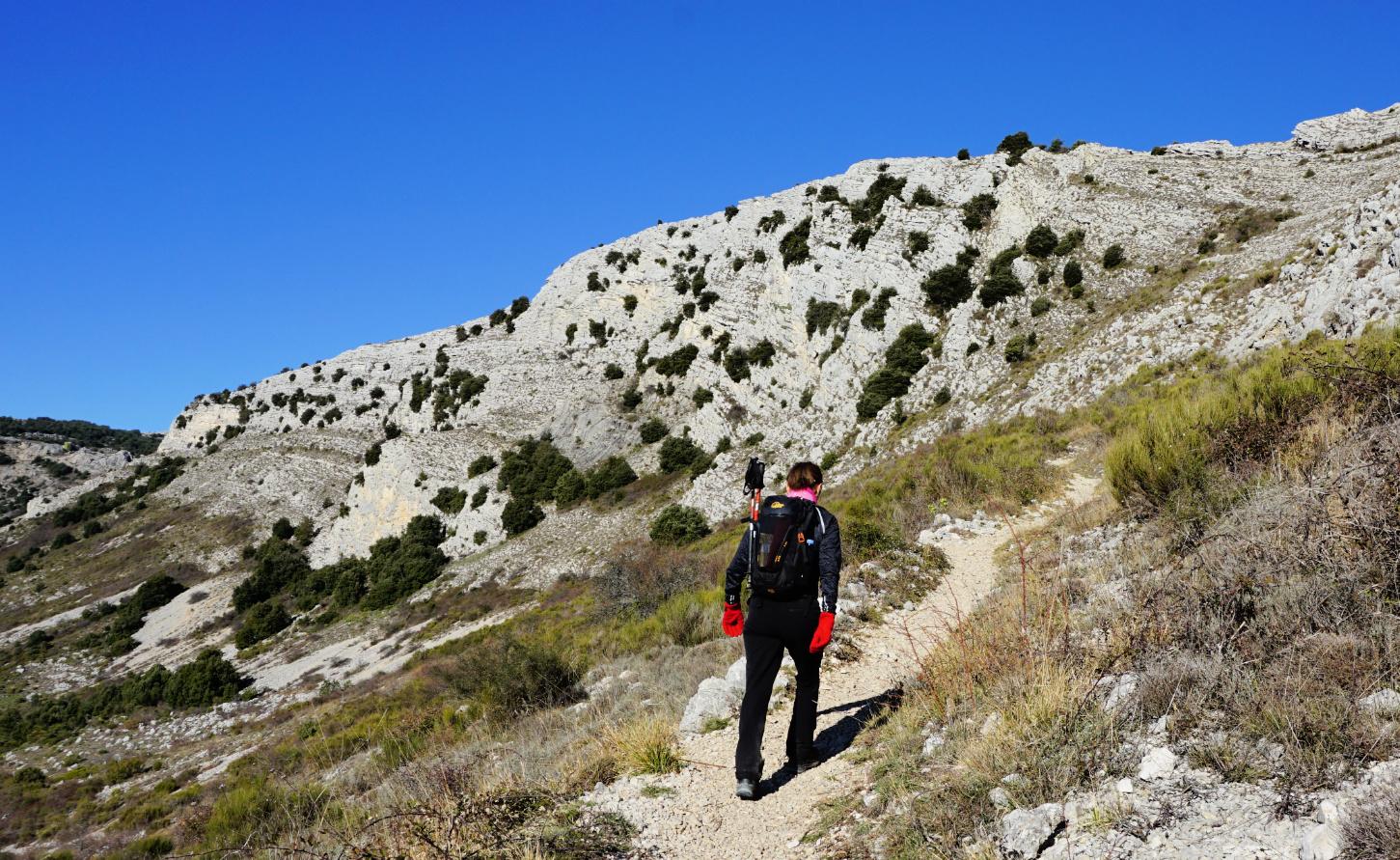 Trail to Plateau de Cavillore