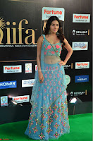 Amyra Dastur in Flower Print Choli Transparent Chunni at IIFA Utsavam Awards 24.JPG