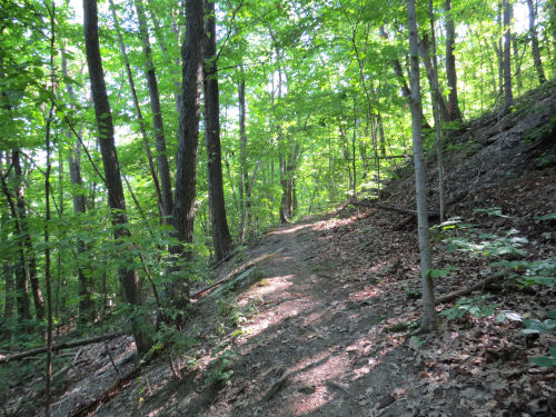 benched hillside trail