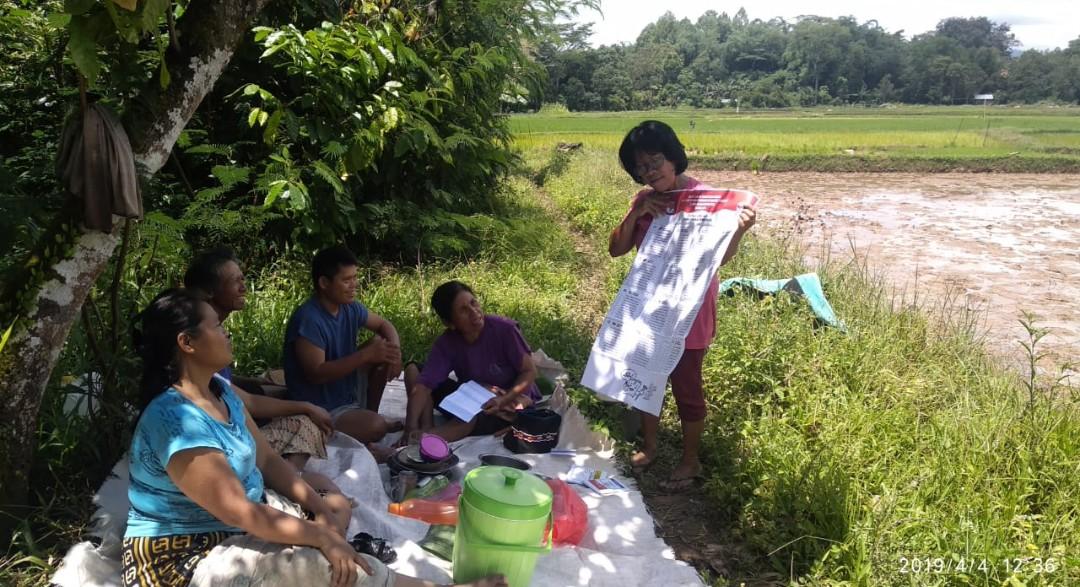 Di Sela-sela Menanam Padi, Relasi Tana Toraja Sosialisasi Contoh Kertas Surat Suara
