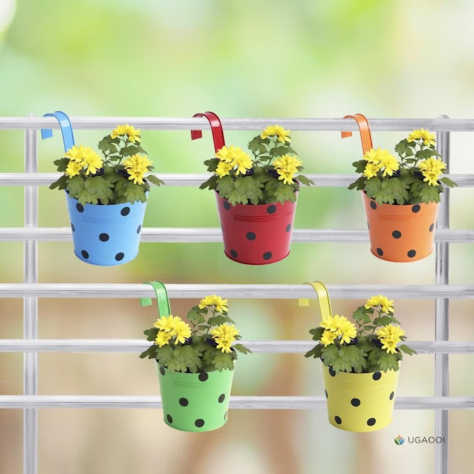 Polka Dot Round Railing Planter - Set of 5