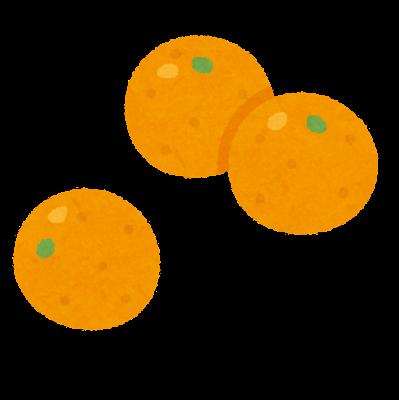 金柑のイラスト
