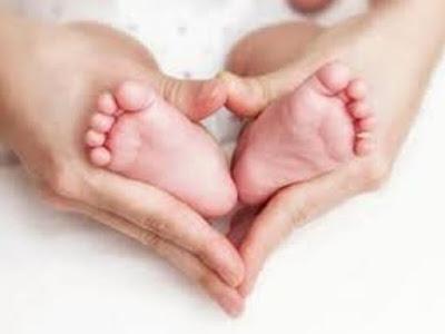 Gambar Bagaimana Proses Bayi Tabung Dalam Islam