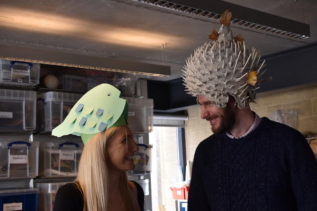 One person wearing a paper puffer fish helmet and one person wearing a replica puffer fish helmet