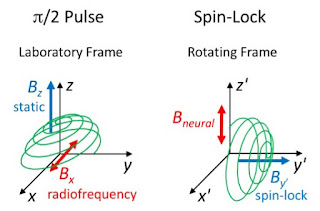 Comparison of a π/2 pulse and spin-lock during magnetic resonance imaging.