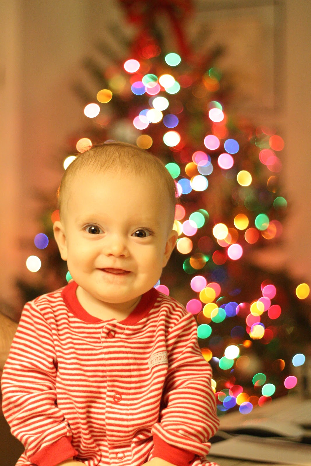 Greener Grass Handmade- Blog: Baby's First Christmas ...