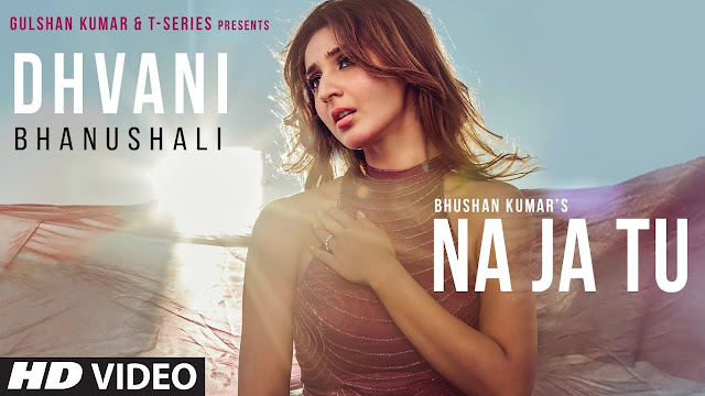 "DHVANI BHANUSHALI: ""NA JA TU"" SONG LYRICS"