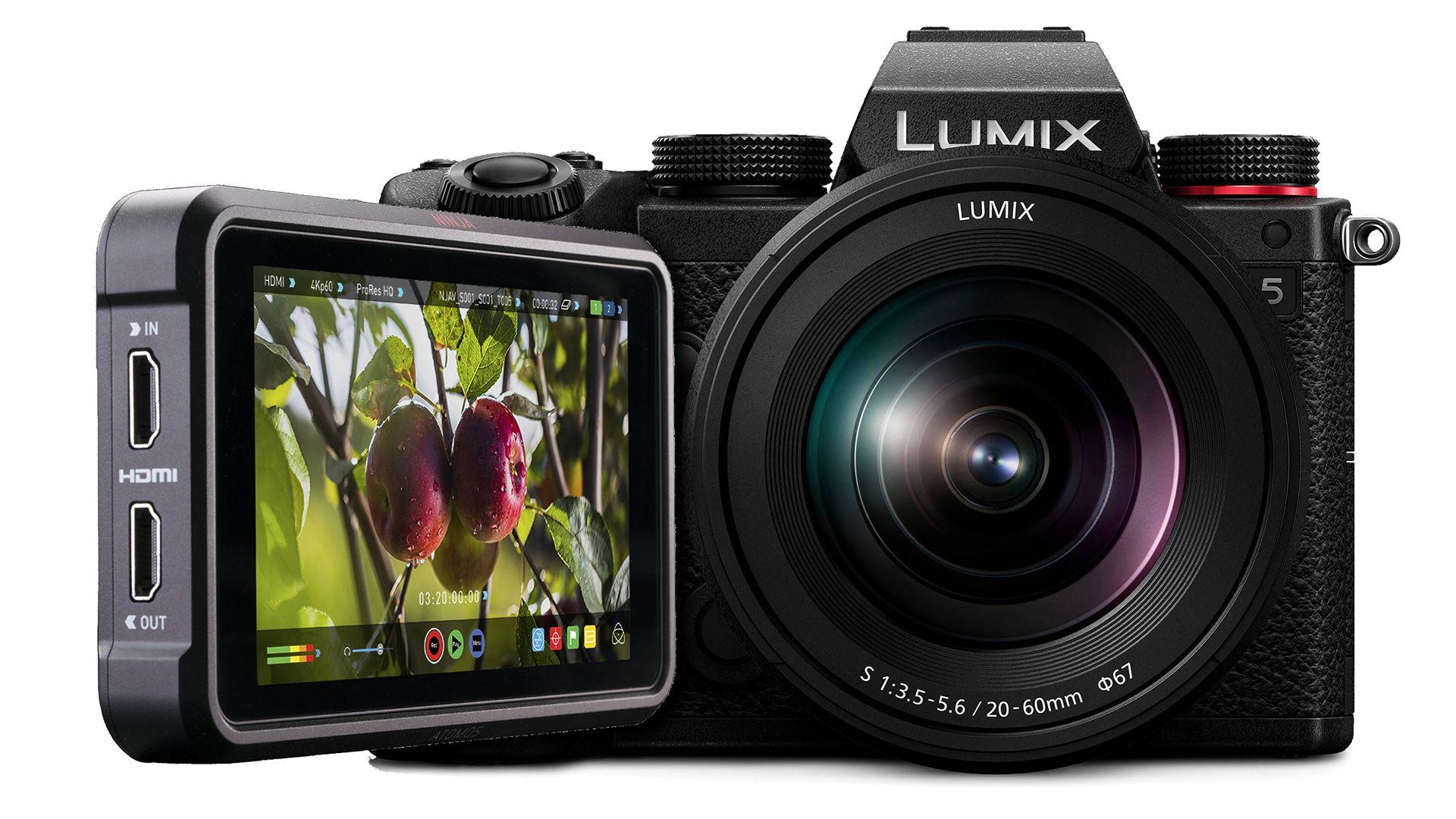 Panasonic Lumix S5 и Atomos Ninja V
