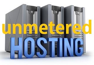 Unmetered Web Hosting Dan Unmetered Bandwidth