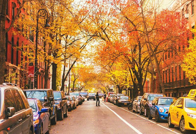 The irresistible beauty of the American autumn