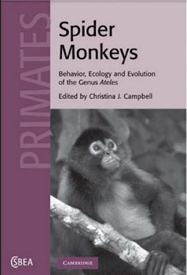 Spider Monkeys Behavior,