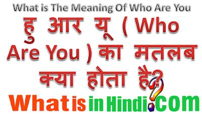 Who are you का मतलब क्या होता है