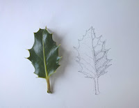 Holly leaf underway by Rachel M Scott