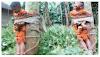 Miris, Seorang Bocah Mencuri Roti Hanya Karna Kelaparan, Anak Ini di Ikat dan Dipukul Hingga Tewas
