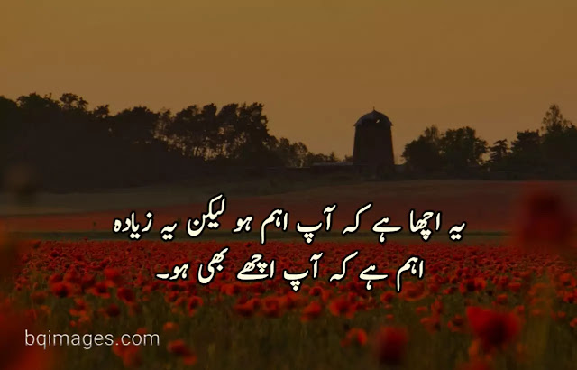 quotes in urdu about friends