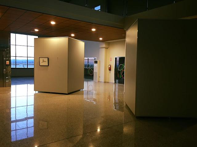 Montaje de exposición de pintura en Museo Picualia. Diego Ortega Alonso.