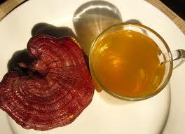 chế biến nấm linh chi trị bệnh