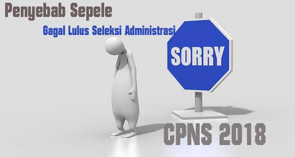 Kesalahan-kesalahan Sepele Penyebab Gagal Lolos Seleksi Administrasi CPNS 2018 👊